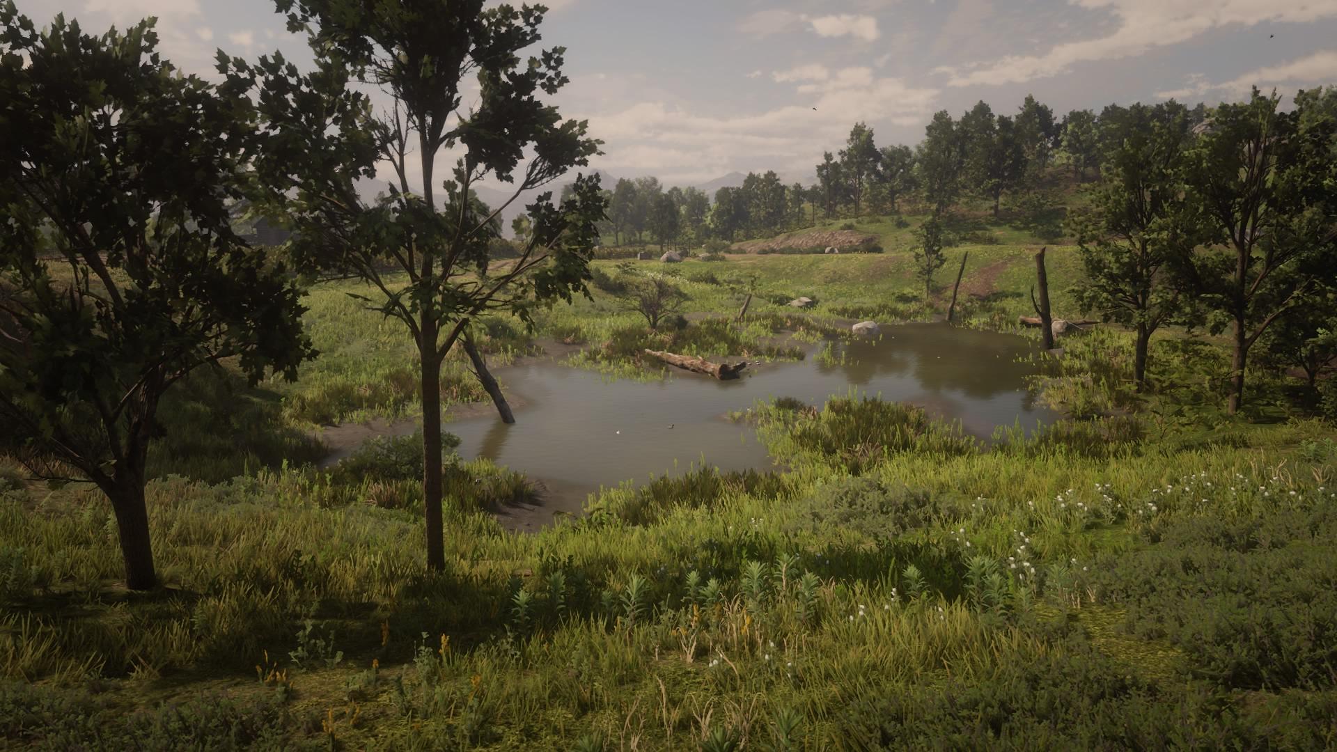 Mattock Pond