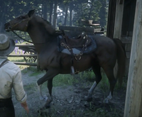 RDR Jeremiah Horse