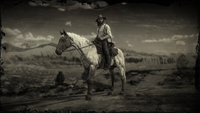 Flaxen Roan Tennessee Walker loading screen