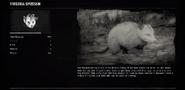 OpossumProfileRDR2