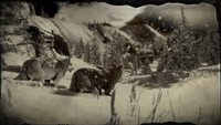 Adler Ranch with wolves loading screen