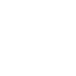 Serrated Tooth Fossil.png