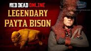 Red Dead Online - Legendary Payta Bison Mission Animal Field Guide