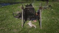 Deer - Bug1