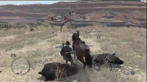Red_Dead_Redemption_Best_Boar_Hunting_Location_&_Legendary_Gordo_Boar_In_*HD*(Funny)