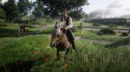 Chick Matthews on horseback
