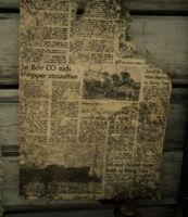 Vietnam War newspaper rdr2