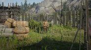 Yukon Nik's guard at Fort Riggs
