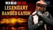 Red Dead Online - Legendary Banded Gator Mission Animal Field Guide