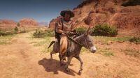 Rio Bravo Donkey Rider