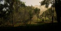 Jungles in Guarma 2