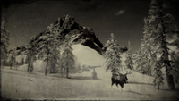 Moose out of bounds in Ambarino loading screen