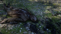 RDR2 Limpany rotted corpse