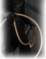 REINFORCED LASSO ingame