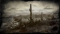 Ridgewood Farm and Cholla Springs loading screen