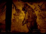 Legendary Owiza Bear