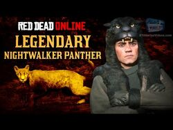 Red Dead Online - Legendary Nightwalker Panther Location -Animal Field Guide-