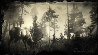 Roanoke Ridge, Rocky Mountain Bull Elk loading screen