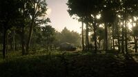 Kamassa River hideout in Red Dead Online seen from the east