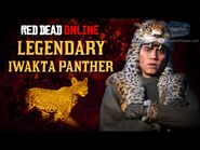 Red Dead Online - Legendary Iwakta Panther Mission -Animal Field Guide-