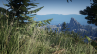 Grizzlies East overlooking Three Sisters