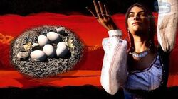 Red Dead Online - All Bird Eggs Locations Madam Nazar Collection