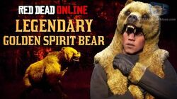 Red Dead Online - Legendary Golden Spirit Bear Mission Animal Field Guide