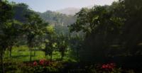 Jungles in Guarma 7