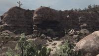 Cueva Seca wagon remains
