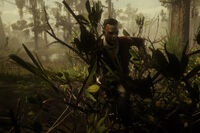 Night Folk member hiding in bush to ambush the player