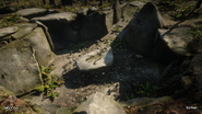 RDR2 POI 33 Old Tomb 03