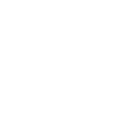 Front Tooth Fossil.png