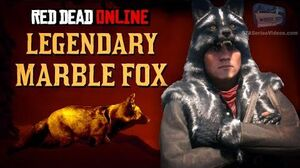 Red_Dead_Online_-_Legendary_Marble_Fox_Location_Animal_Field_Guide