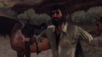 Rdr together in paradise21