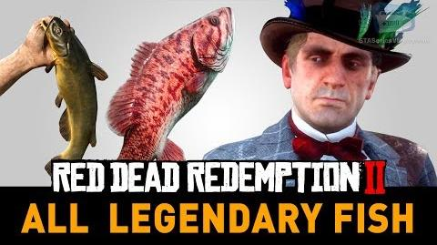 Red_Dead_Redemption_2_All_Legendary_Fish_(A_Fisher_of_Fish)