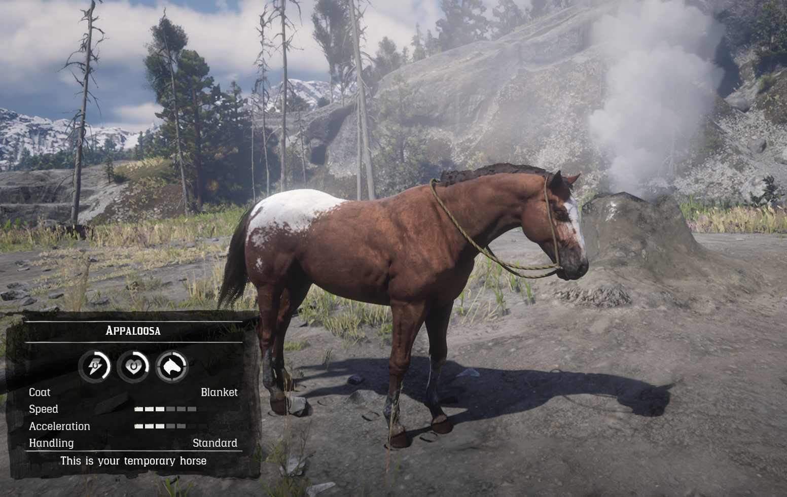 Appaloosa Red Dead Wiki Fandom