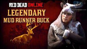 Red_Dead_Online_-_Legendary_Mud_Runner_Buck_Location_Animal_Field_Guide