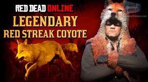 Red_Dead_Online_-_Legendary_Red_Streak_Coyote_Location_Animal_Field_Guide
