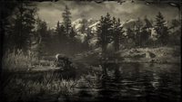 Cattail Pond loading screen