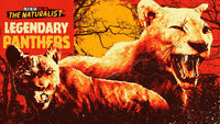 Legendary Panthers rdo promo
