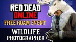 Red Dead Online - Free Roam Event Wildlife Photographer Naturalist Role