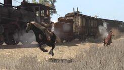 War Horse 8