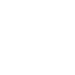 Brow Horn Fossil.png