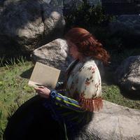 RDR2 Molly Reading