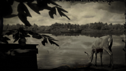 Deer at Lannahechee River loading screen