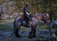 RD2 CapMonroe Horse