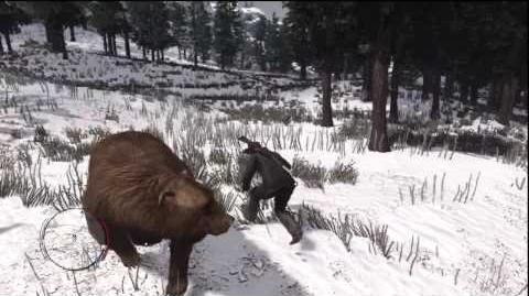 Red_Dead_Redemption_-_Knife_fight_with_a_Bear