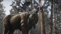 Legendary Ruddy Moose in-game rdo