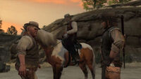 Rdr justice pike's basin13