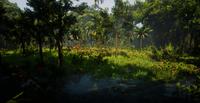 Jungles in Guarma 8